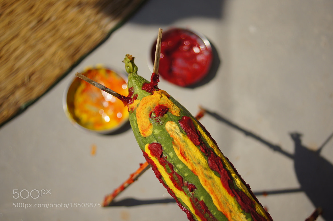 Photograph Colorful Demon. by Afzal Khan on 500px