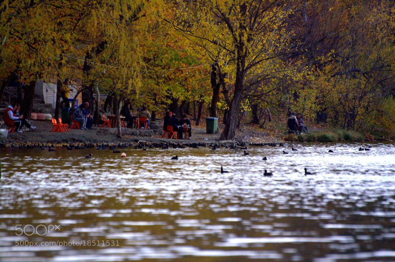 Photograph Eymir Lake by İbrahim ÜRÜKER on 500px