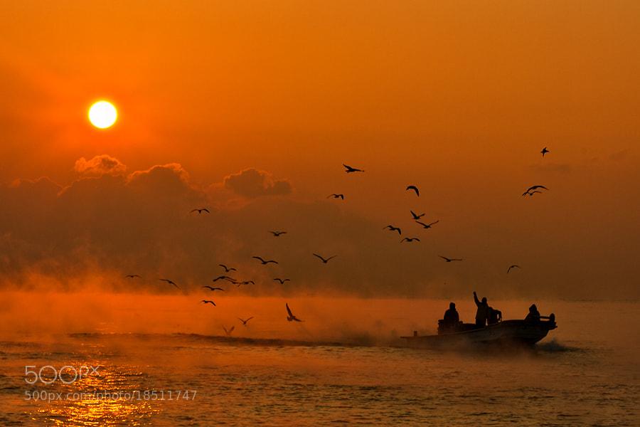 Photograph Morning sea... by Jason Koo on 500px