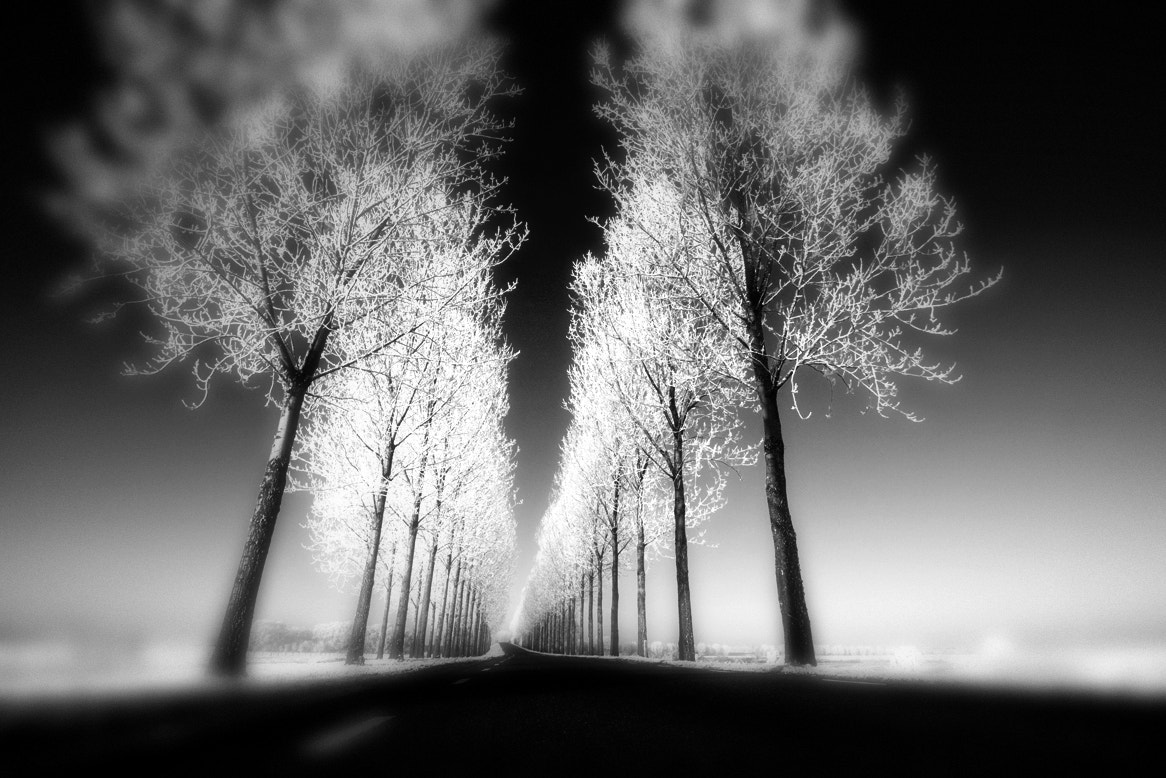 Photograph Winter by Kees Smans on 500px