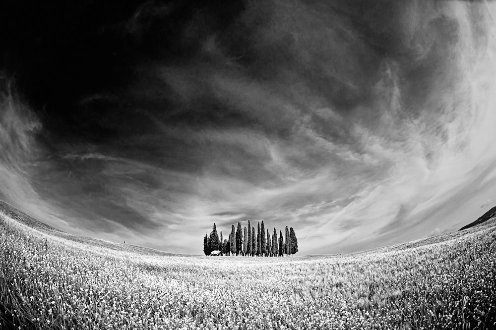 Photograph Center of Tuscany by Allard Schager on 500px