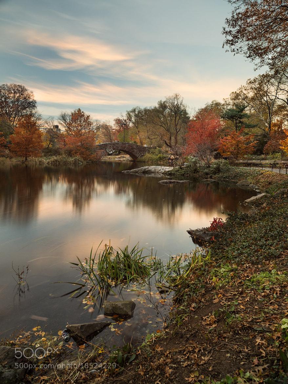 Photograph Gapstow Bridge, Central Park by Ajit Menon on 500px