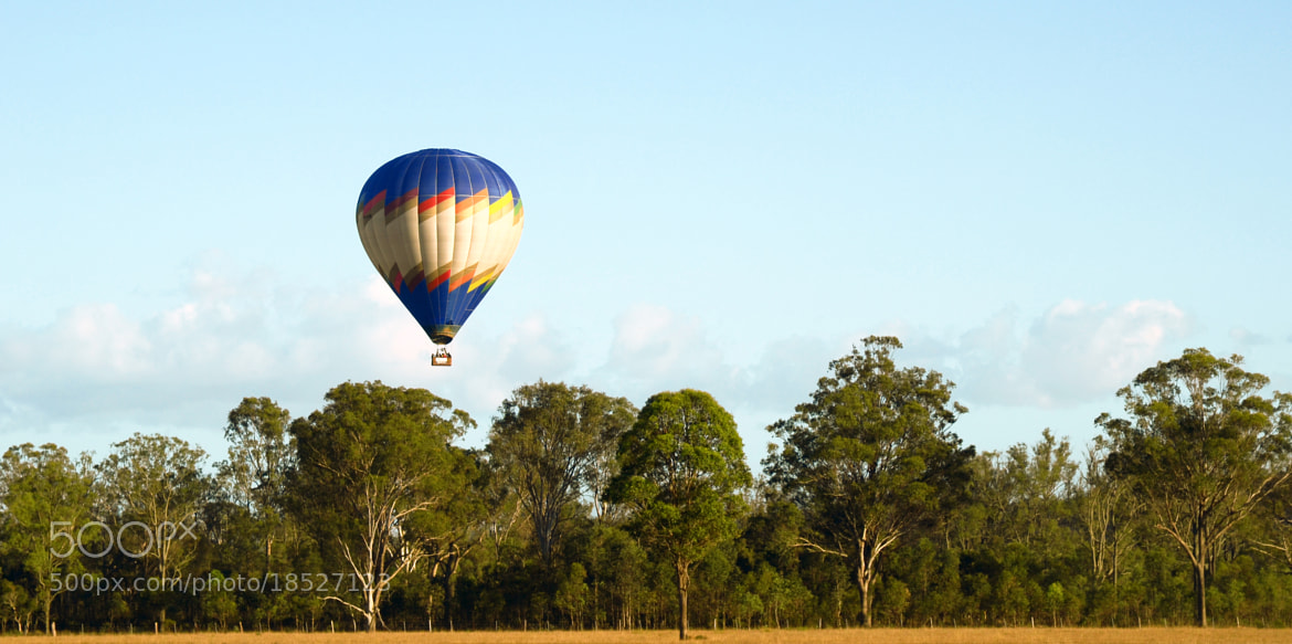 Photograph Balloon landing by Peter Field on 500px
