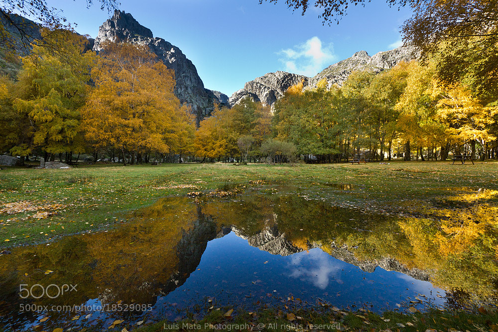 Photograph Autumn reflections by Luis Mata on 500px