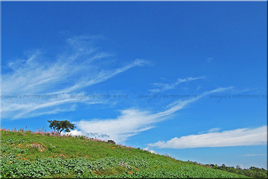 Photograph An Unseen Paradise of Shillong...!! by Navojit Bhuyan on 500px