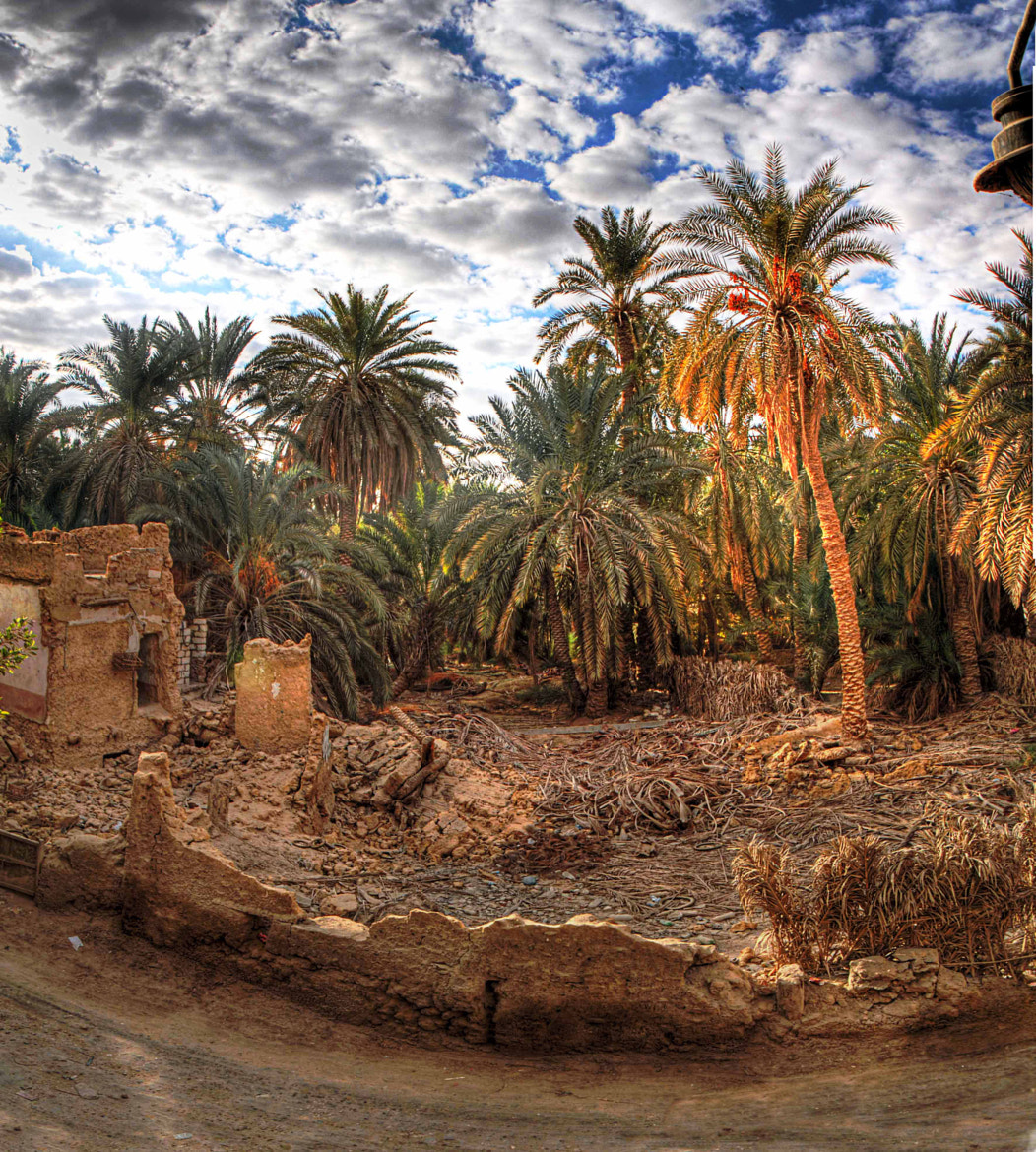 Photograph deserted Oasis by Ali El Hedek on 500px