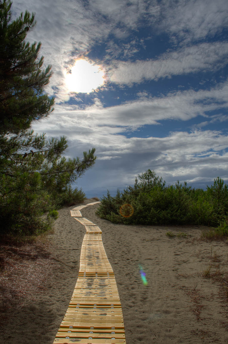 Photograph path to the sea by Roberto Previtera on 500px