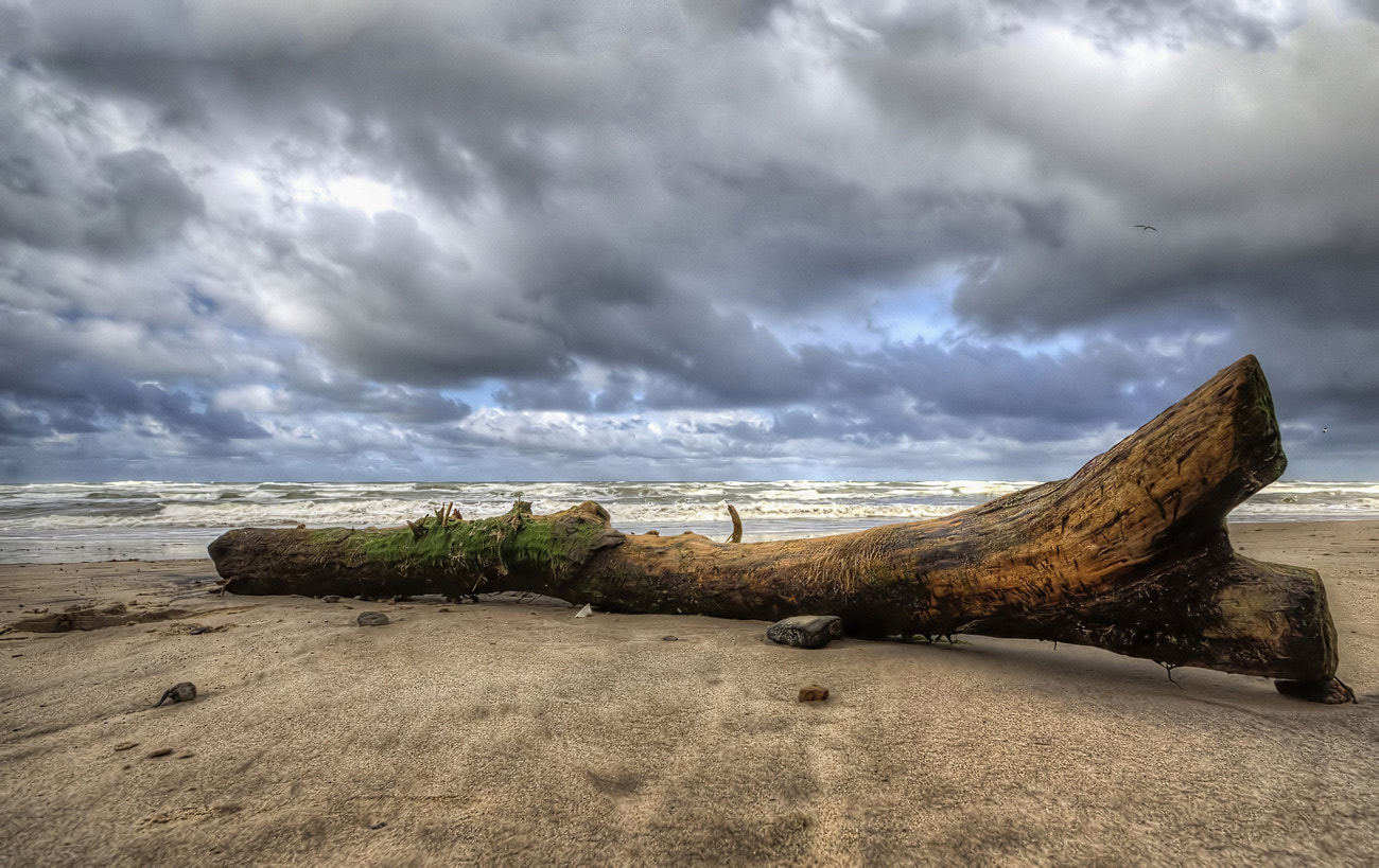 Photograph at the Beach by Ralf Markert on 500px