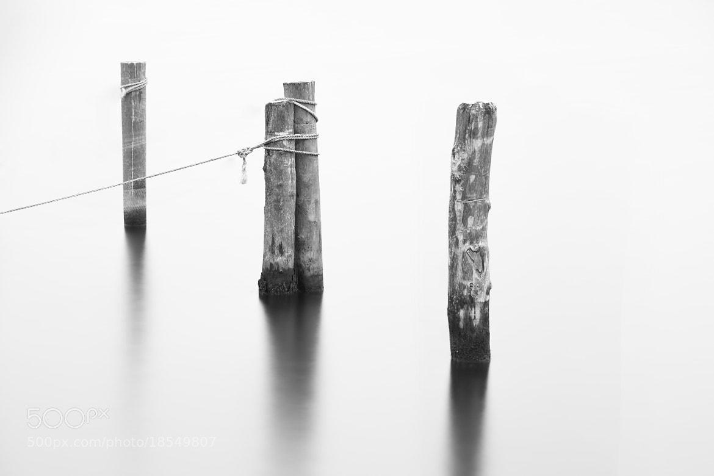 Photograph Harbour Piles by Jan Eggen on 500px