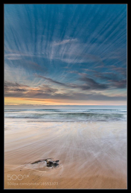 Photograph Vertical by Israel Gutiérrez on 500px