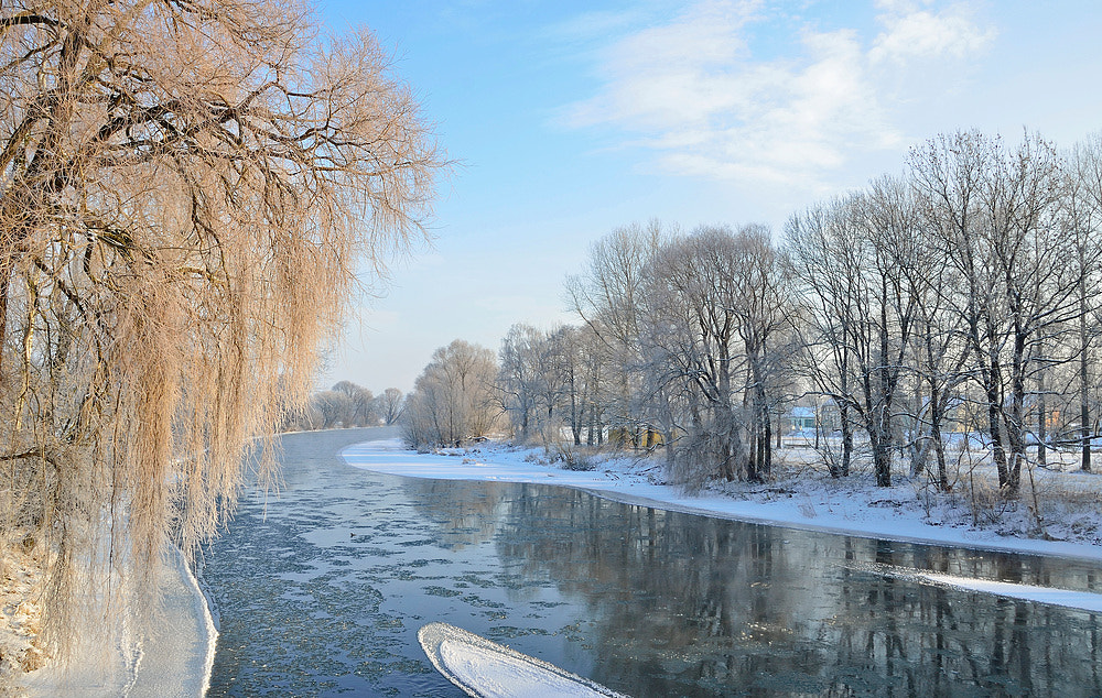 Photograph frozen day by Silvio E. on 500px