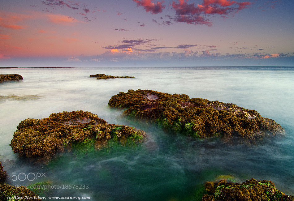 Photograph Long Reef, Sydney by Alexander Novickov on 500px
