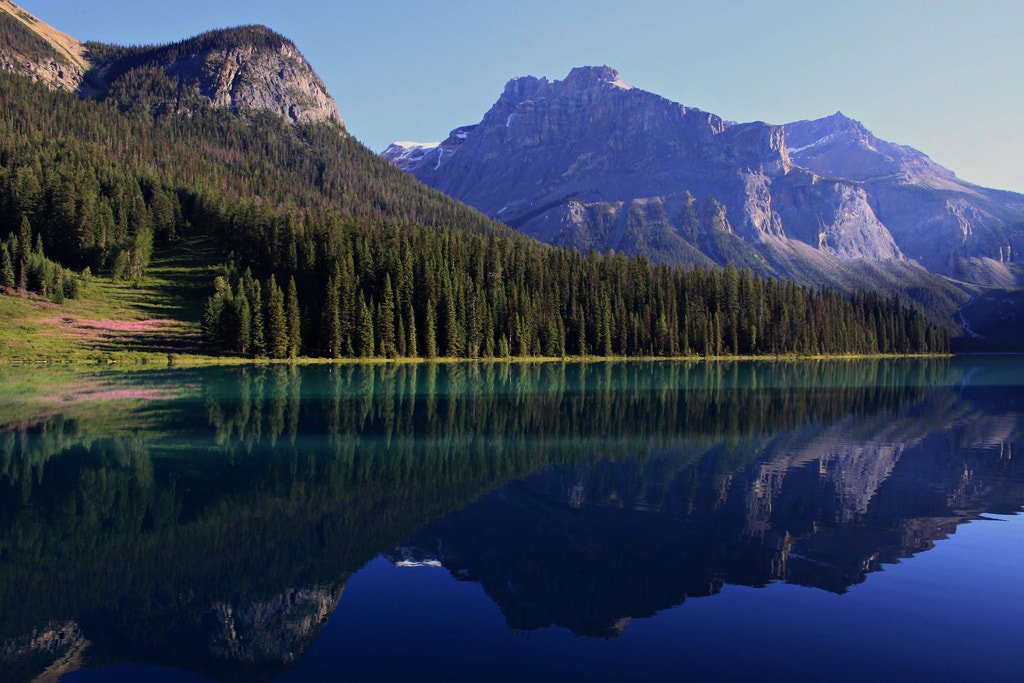 Photograph Emerald Lake by Marilyn  on 500px