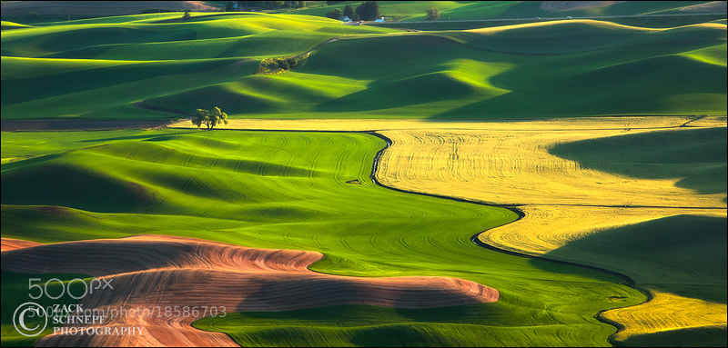 Photograph Palouse Hills by Zack Schnepf on 500px