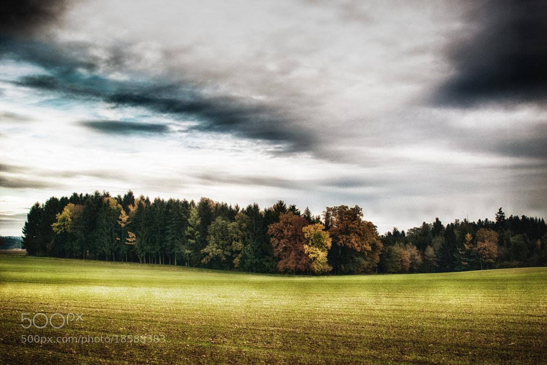 Photograph Autumn by Georg Tueller on 500px