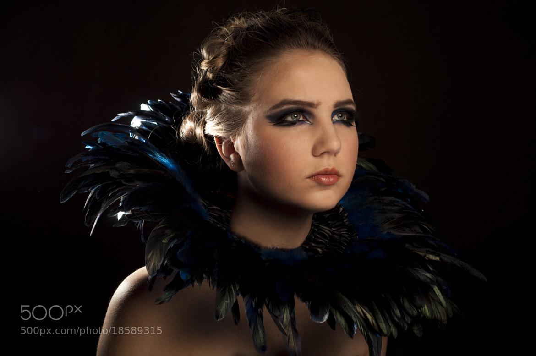 Photograph Blue Feather by Anna Krasnova on 500px