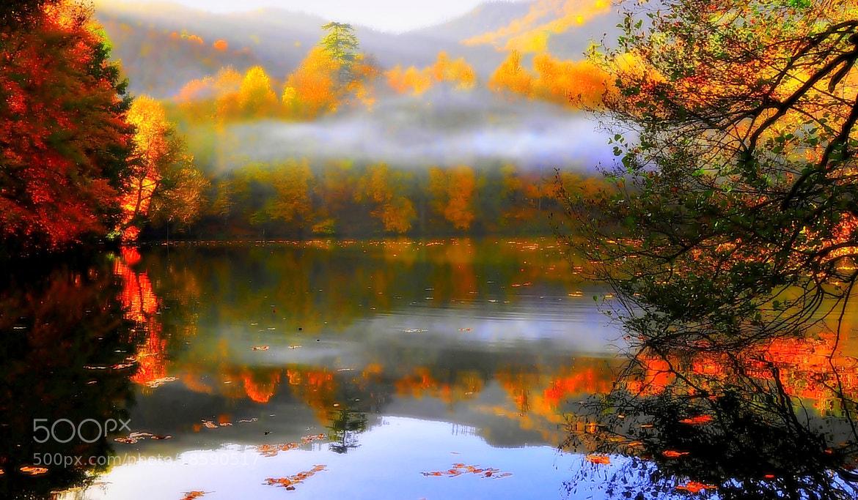 Photograph Doğanın rengi by ömer yücel on 500px