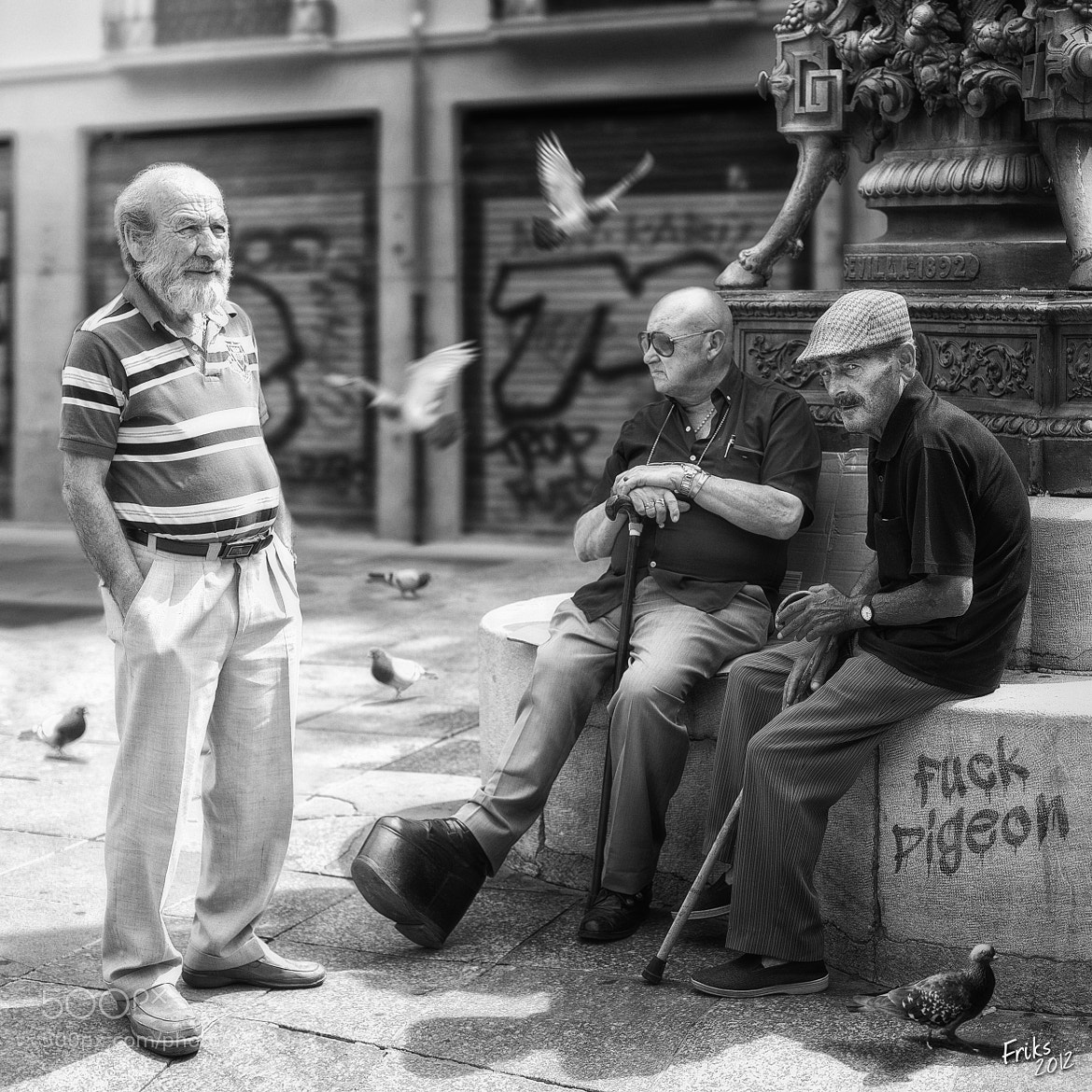 Photograph OF PIGEONS AND MEN by Mr Friks on 500px