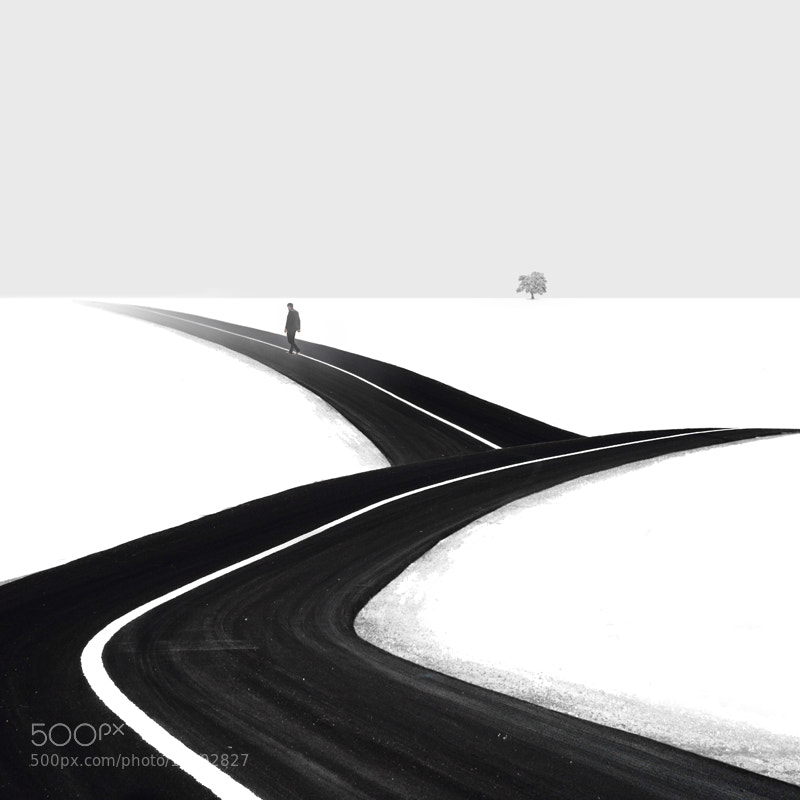 Photograph Passenger by Hossein Zare on 500px