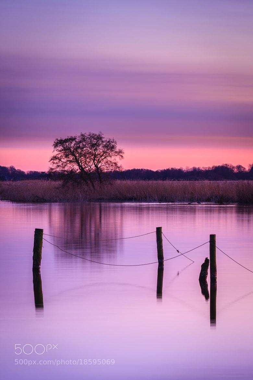 Photograph Purple dusk by Marcel Kerkhof on 500px