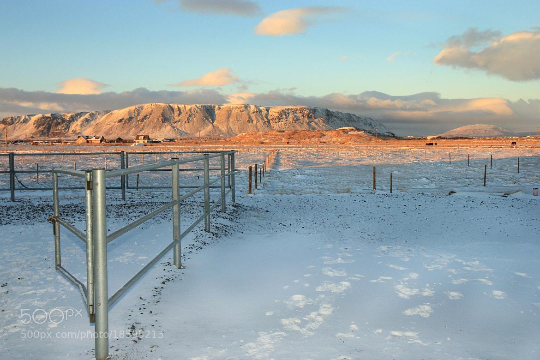 Photograph Wintertime by Anna Guðmundsdóttir on 500px