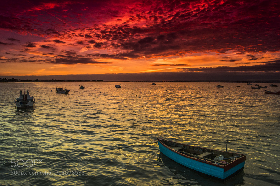 Photograph Sky in Fire ! by Emanuel Fernandes on 500px