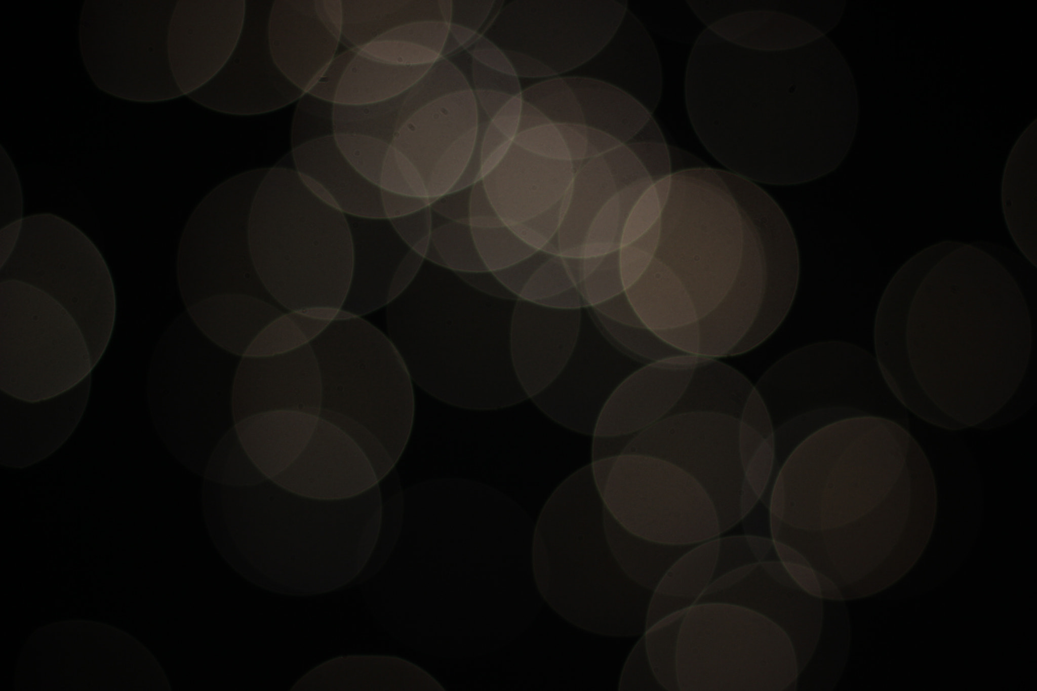 Photograph Bokeh by Anoop Uchil on 500px