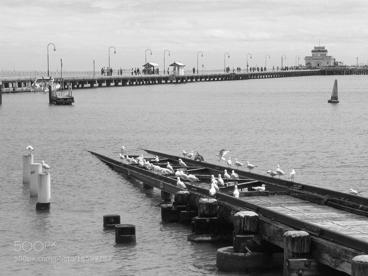 Photograph Saint Kilda by Aude Couture on 500px