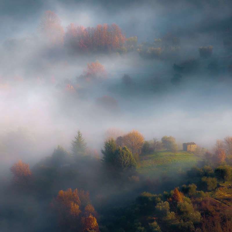 Photograph *** by Guido Maria Rustichini on 500px
