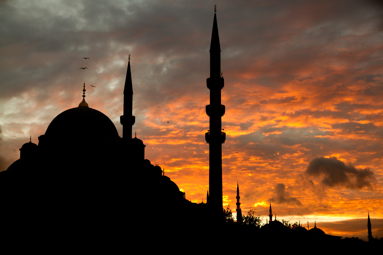 Photograph Istanbul by Tibographie - Thibaud Chosson  on 500px