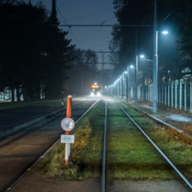 Photograph tramTracks by Lukas Bachschwell