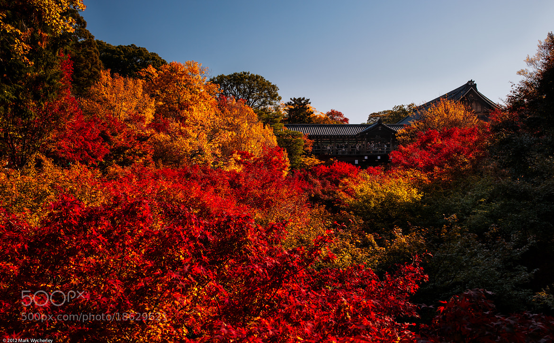 Photograph Tofuku-ji Temple by Mark Wycherley on 500px