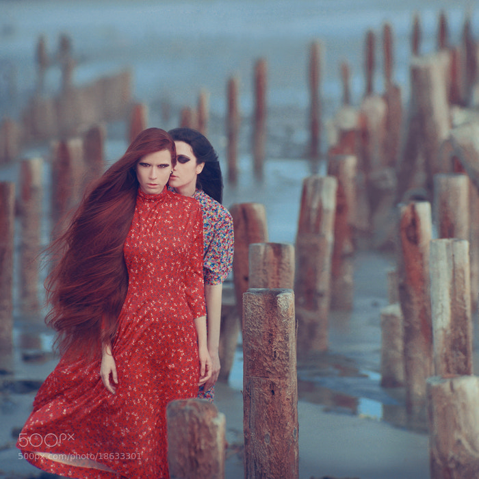 Photograph silence by oprisco  on 500px