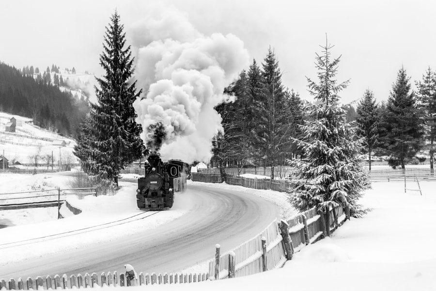 Old train by Sveduneac Dorin Lucian on 500px.com