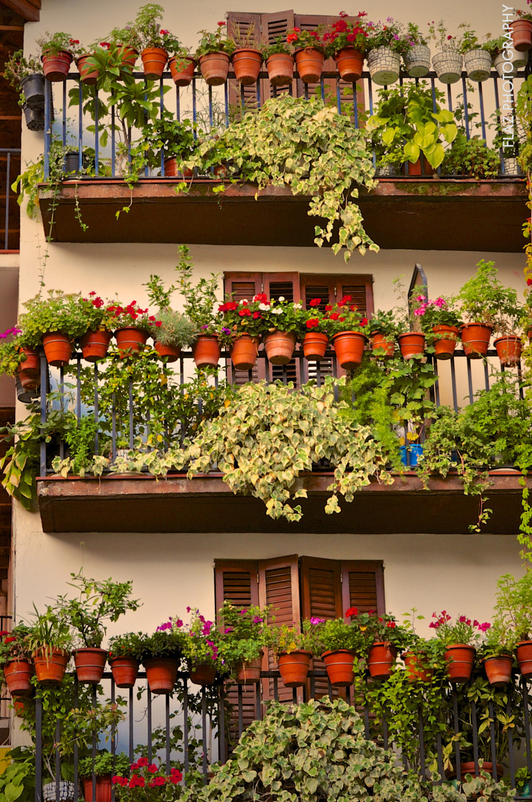 Photograph Balconies by Florencia  on 500px