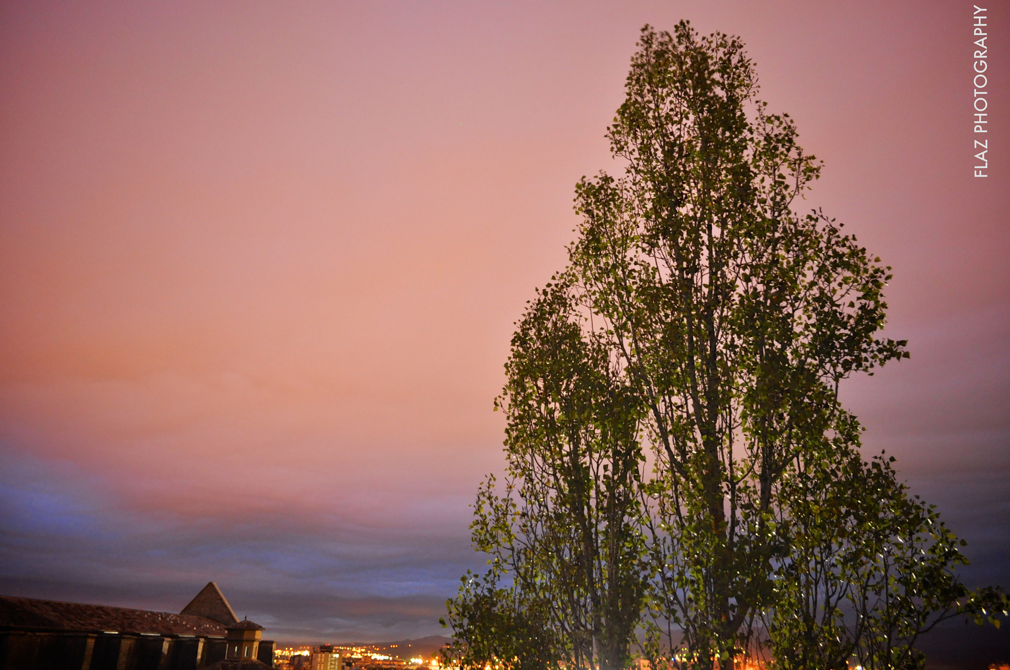 Photograph Pink sky by Florencia  on 500px
