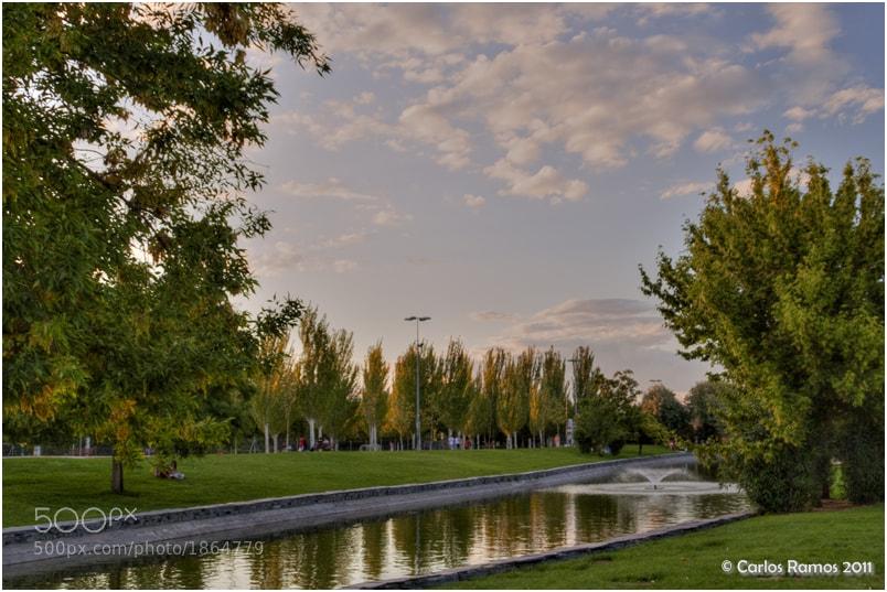 Photograph 35% - Lago Parque del Ocio by Carlos Ramos on 500px