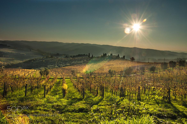 Photograph Tramonto a Panzano in Chianti by Stefano Boschi on 500px