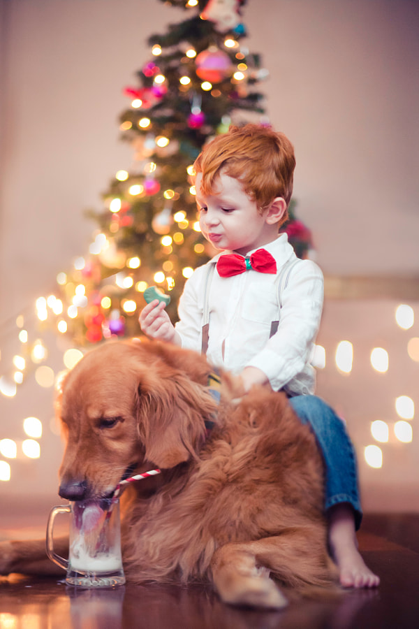 Waiting for Santa by Marcia Fernandes on 500px.com