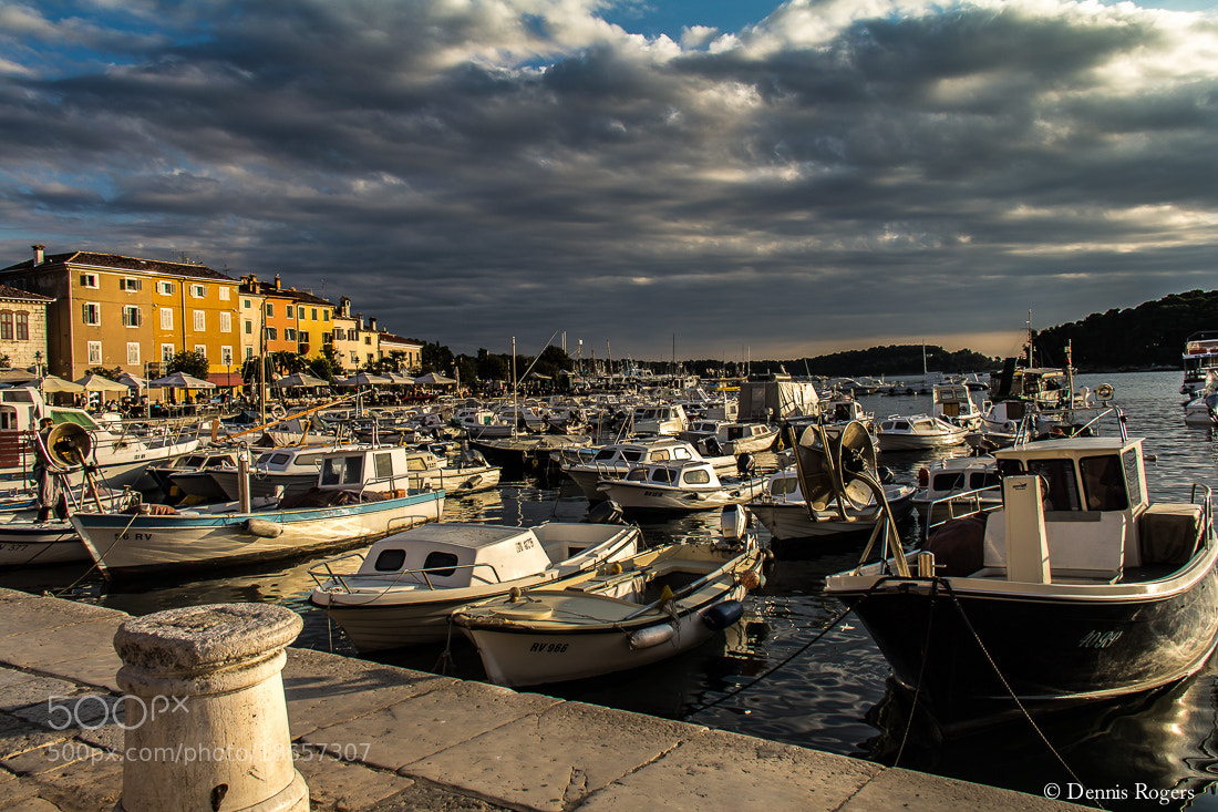 Photograph Crowded Marina by Dennis Rogers on 500px