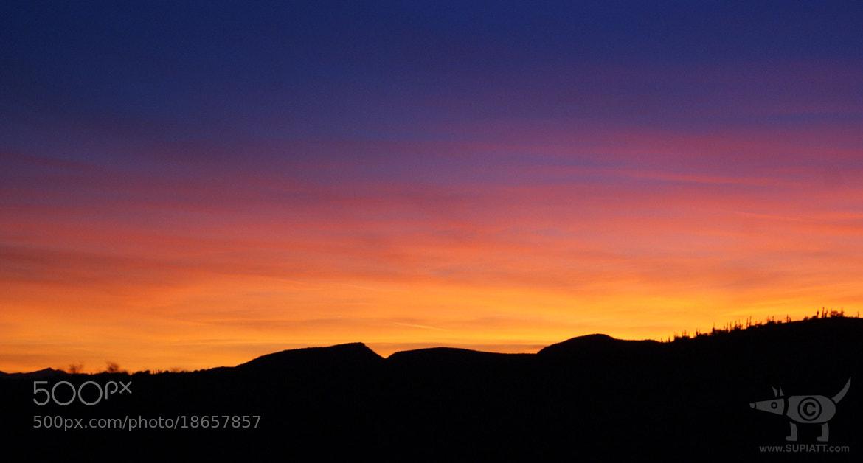 Photograph Sonoran Sunset by su piatt on 500px