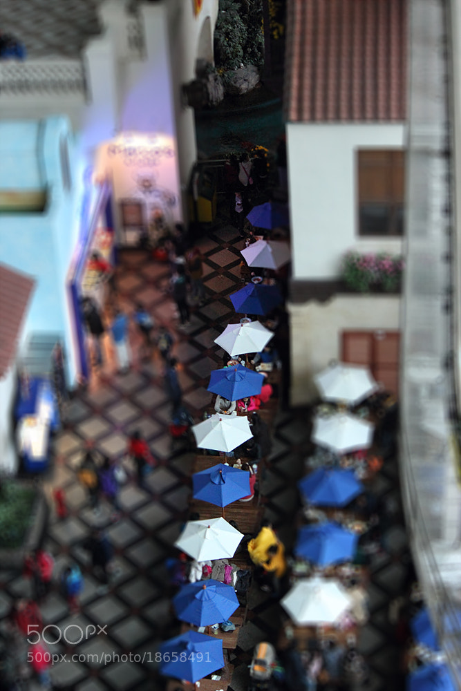 Photograph Parasols by TY Kim on 500px