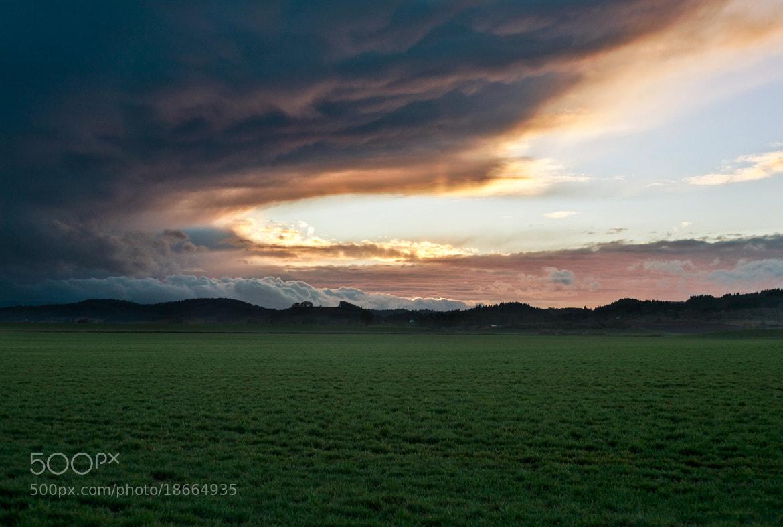 Photograph 200/366 by Reymundo Vargas-Martinez on 500px