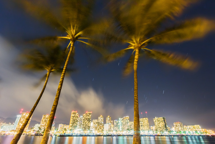 Honolulu Night