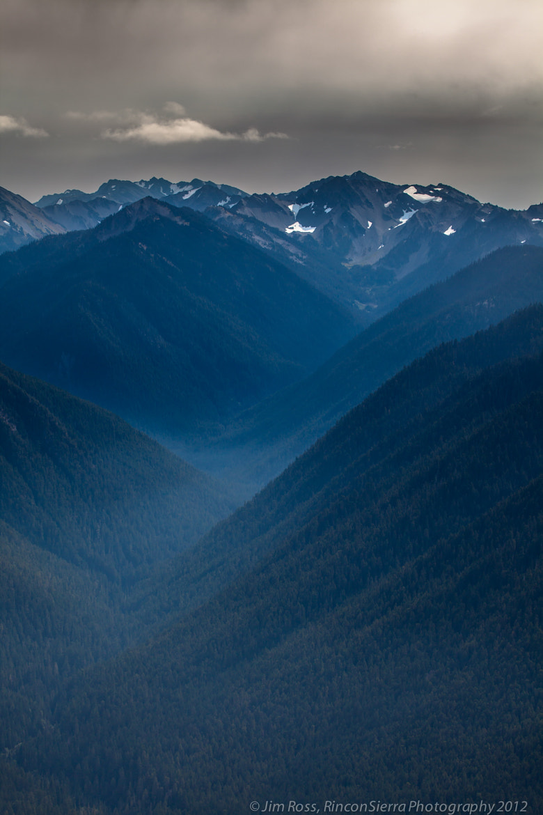 Photograph Up On Hurricane Ridge!!! (part II) by Jim Ross on 500px