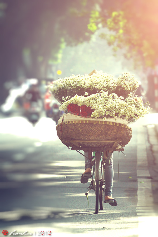 Photograph Untitled by Dam Nguyen on 500px