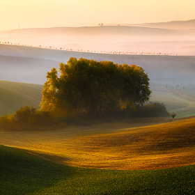 clump by Piotr Krol (PiotrKrol_Bax)) on 500px.com