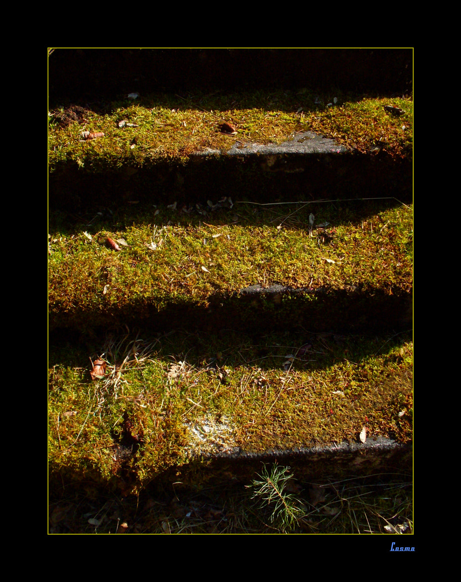 Photograph Stairs to oblivion by CosmoThe1andonly * on 500px