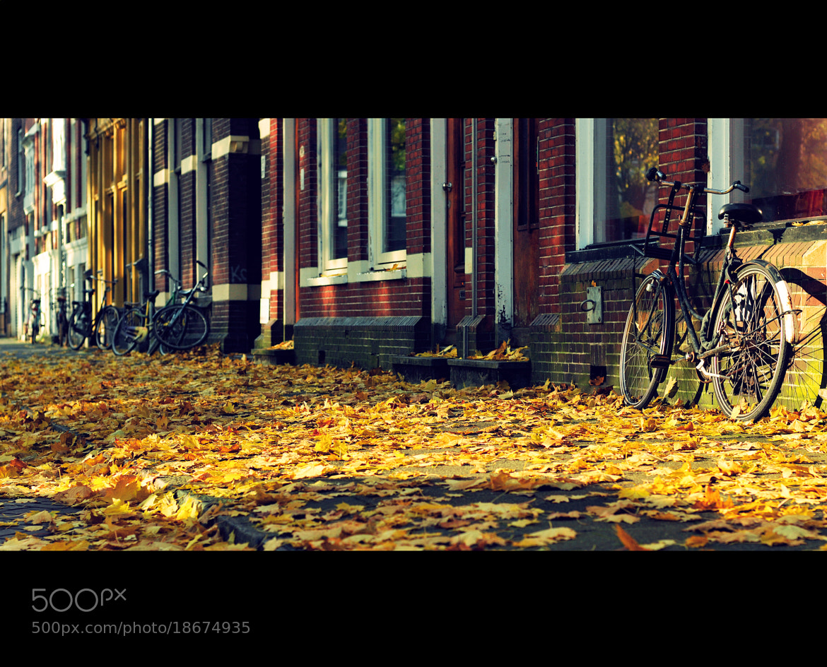 Photograph Old Things by Daniel Bosma on 500px