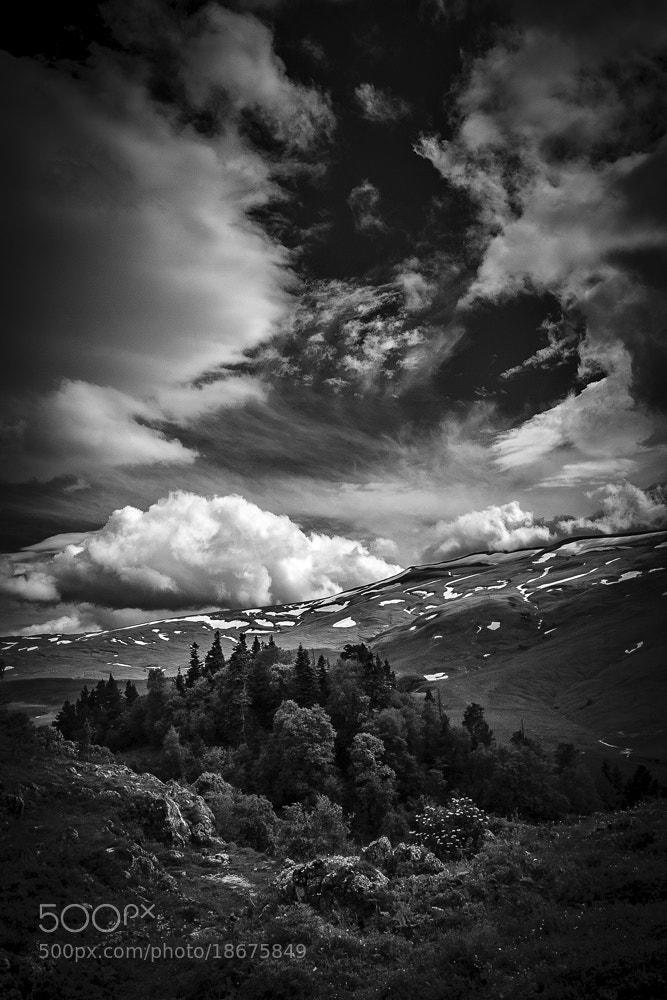 Photograph Lagonaki by Vladimir Orlov on 500px